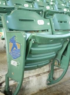 MP seat.jpg