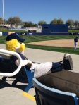 Bernie takes in a bit of the intrasquad game on Friday.