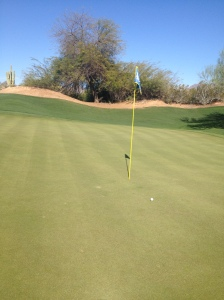 My approach on the famed 8th hole, a 172-yd Par 3, the turning point in the match.