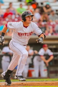 Photo Courtesy: Ann Mollica/Wisconsin Timber Rattlers